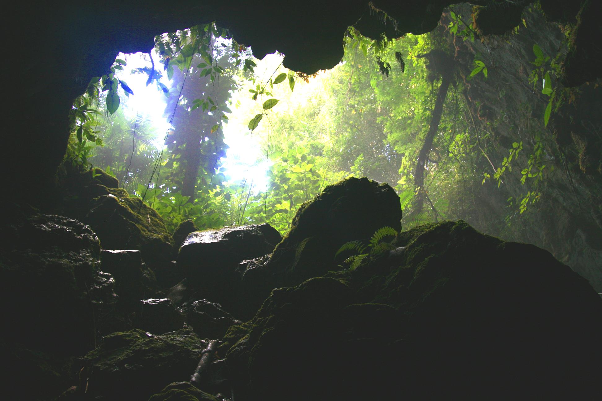 caveforgottendreams